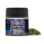 hempower blueberry 17% cbd 1gr